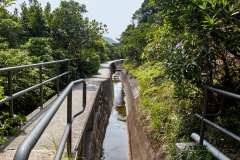 The Tai Tam West Catchwater. The gradient is so gentle you barely notice it.