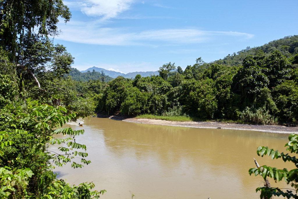 Padas River, Borneo
