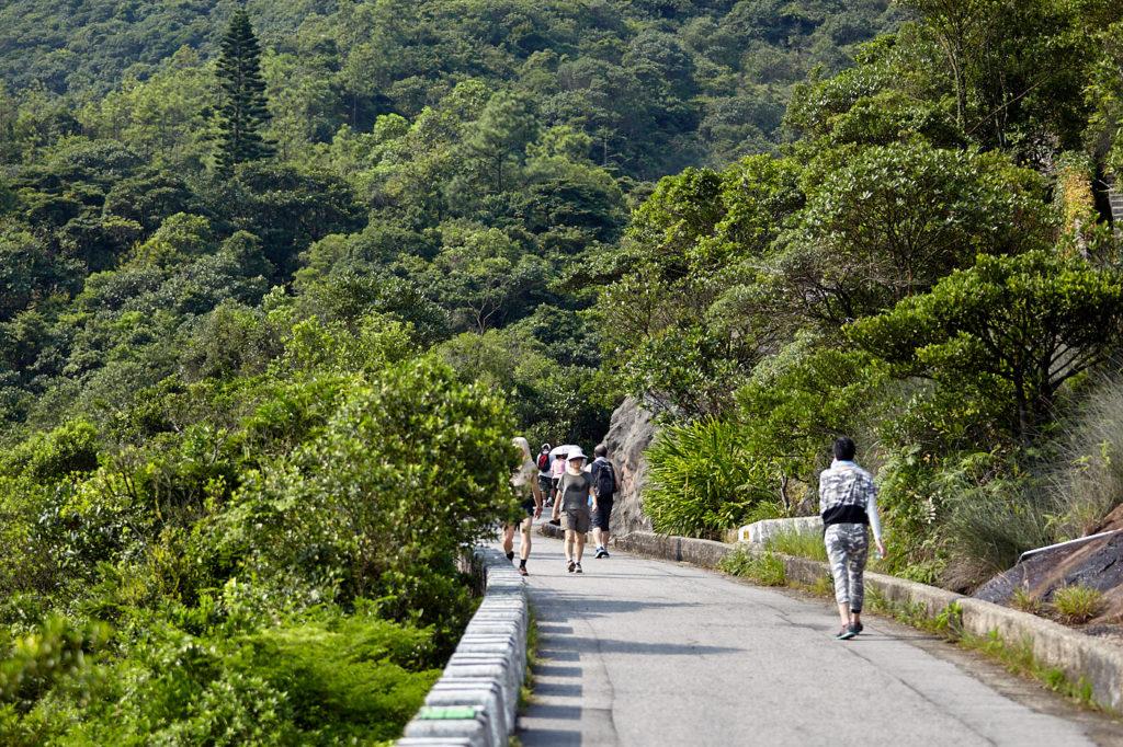 Hiking along Mt Parker Road in Hong Kong