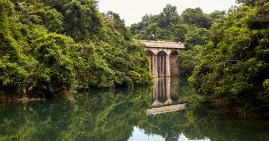 Hiking in Hong Kong: Exploring the waterways of Tai Tam