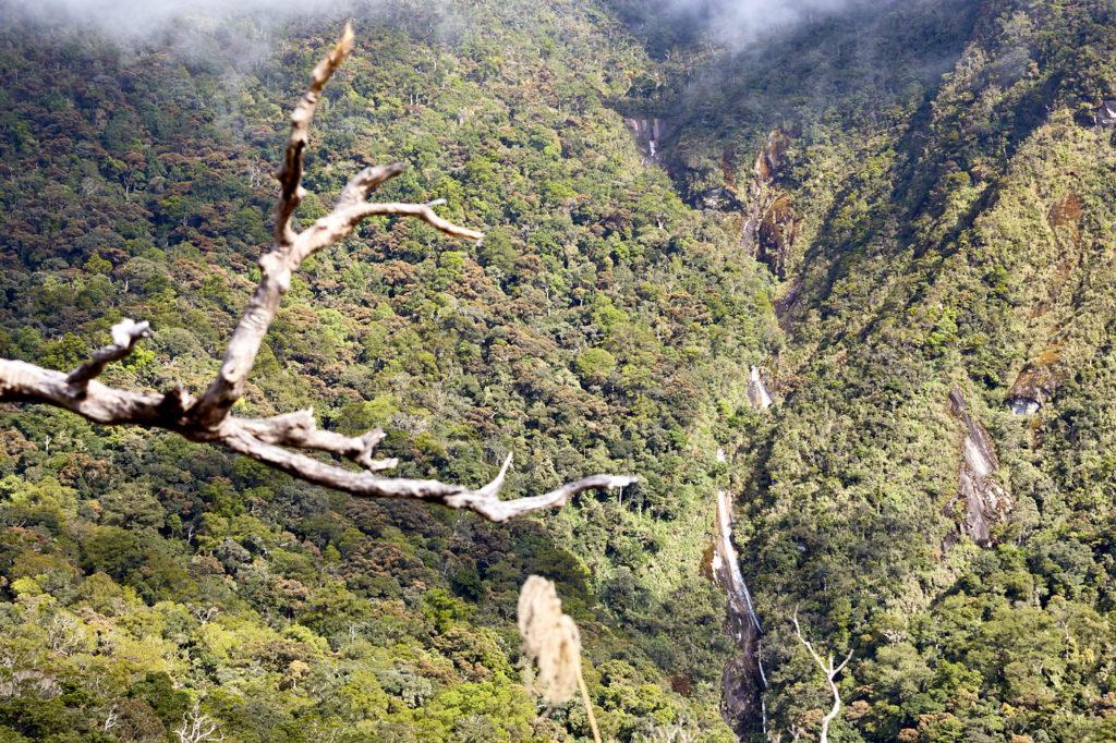 The old Mesilau trail