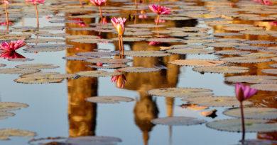 Sukhothai, the cradle of Thai civilisation